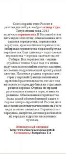 Горихвостка -2