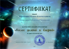Ф№8-Сертификат Карасевой Едене Анатольевне