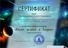 МИО-Сертификат Майорниковой Елене Сергеевне