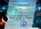 МИО-Сертификат Шеламовой Галине Николаевне